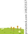 다해과 꽃 14625557