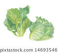 brussels, sprouts, little 14693546