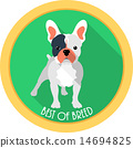 dog best of breed medal icon flat design  14694825