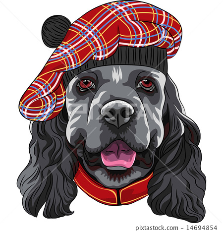 vector dog American Cocker Spaniel in Scottish Tam 14694854