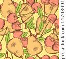pear, vintage, sketch 14708091