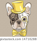 vector funny cartoon hipster French Bulldog dog  14710288