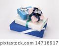 包裹 彩帶 緞帶 14716917