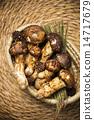 Mushroom 14717679