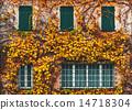 exterior, windows, wall 14718304
