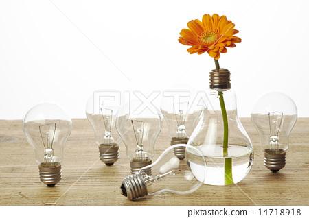 Vase For One Flower Gerbera Gerberas Stock Photo 14718918 Pixta
