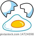 Egg 14724098