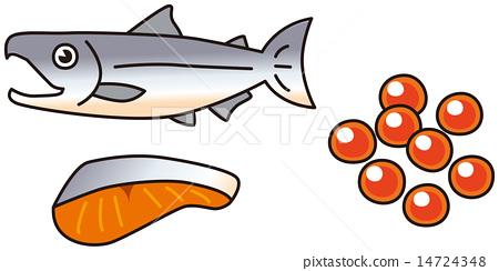salmon 14724348
