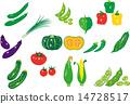 矢量 黃瓜 蔬菜 14728517