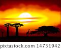 Africa sunset 14731942