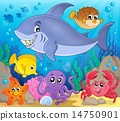 Image with shark theme 7 14750901