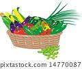 vector, vectors, vegetables 14770087