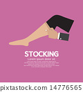 Lady Stocking Clothes Accessories 14776565