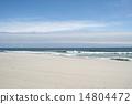 春の海 14804472