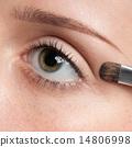 brush, woman, makeup 14806998