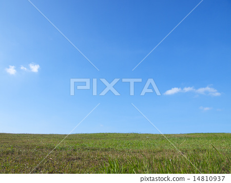 Green grass and blue sky with white clouds 14810937