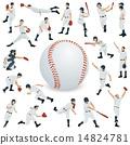 baseball, vector, vectors 14824781