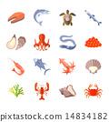 sea food flat 14834182