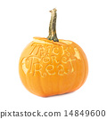 Trick or treat Halloween pumpkin isolated 14849600