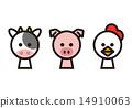 奶牛 雞 雞肉 14910063