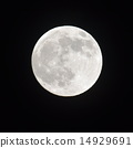 nightly sky with large moon 14929691