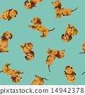 样式 动物 狗 14942378