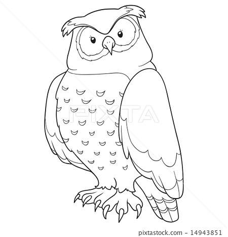 Coloring book (owl) 14943851