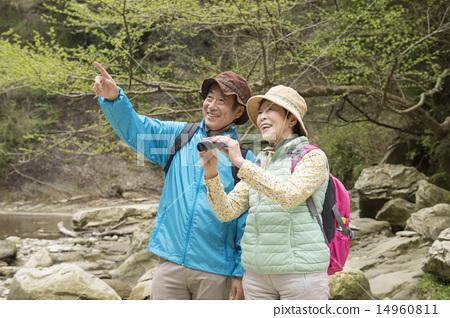 年長 年長的夫婦 年長夫婦 14960811