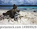 mauritius beach 14969926