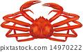 雪蟹,蟹松針 14970222