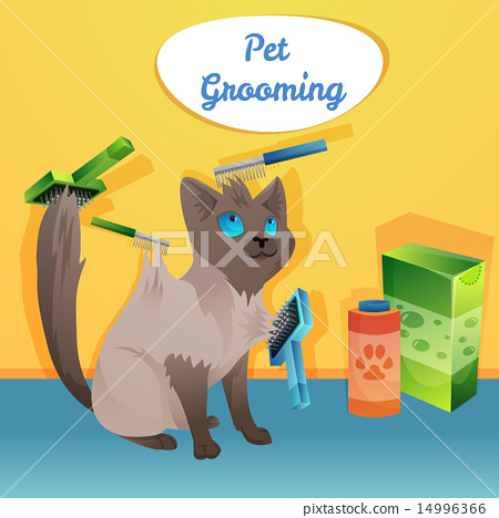 Cat character in groom salon 14996366
