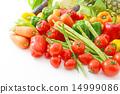 食材 原料 蔬菜 14999086
