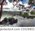 Iguacu Falls 15028801