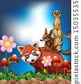 meerkat, red, panda 15035535