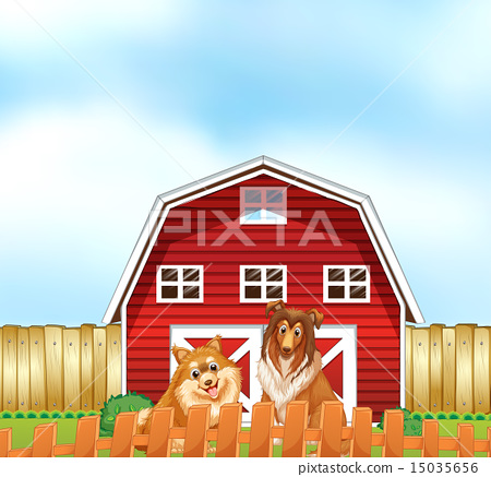 Dogs and barn 15035656