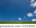 ท้องฟ้าในฤดูร้อน 15038982