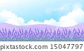 lavander, lavender, herb 15047797