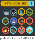 Domestic pets and vet healthcare flat icons set 15097337