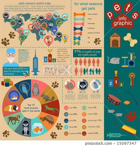 Domestic pets infographic elements, helthcare, vet 15097347