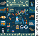 Domestic pets infographic elements, helthcare, vet 15097354