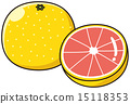 grapefruit, sectional, cross-section 15118353