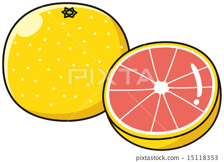 grapefruit, grapefruits, vector 15118353