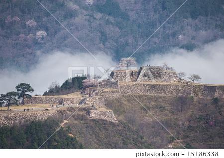 Takeda Castle Ruins 15186338