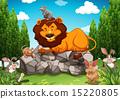 狮子 野生生物 动物 15220805