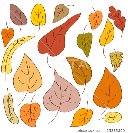 Set of hand-drawn autumn leaves  15285800