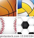 sports balls over white background vector illustration 15300384