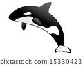 逆戟鲸 矢量 跳 15330423
