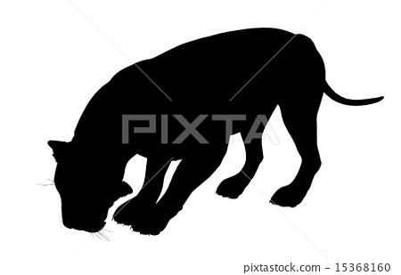 Lion Illustration Silhouette 15368160
