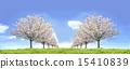 Cherry blossom row grassland blue sky symmetrical synthesis 15410839