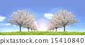 Cherry blossom row grassland blue sky symmetric backlight synthesis 15410840